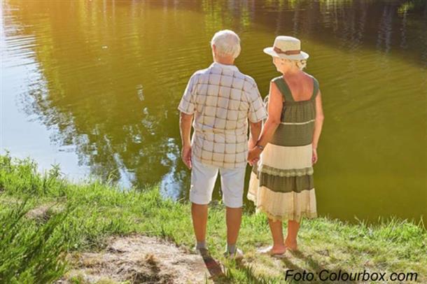 Hvilke forhold i alderen 60-69 år har betydning for eldre sitt behov for hjelp som pensjonister?